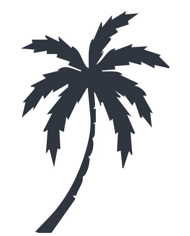 Pin palmier dessin on pinterest - Dessin palmier ...